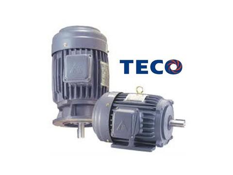 Motor - Teco